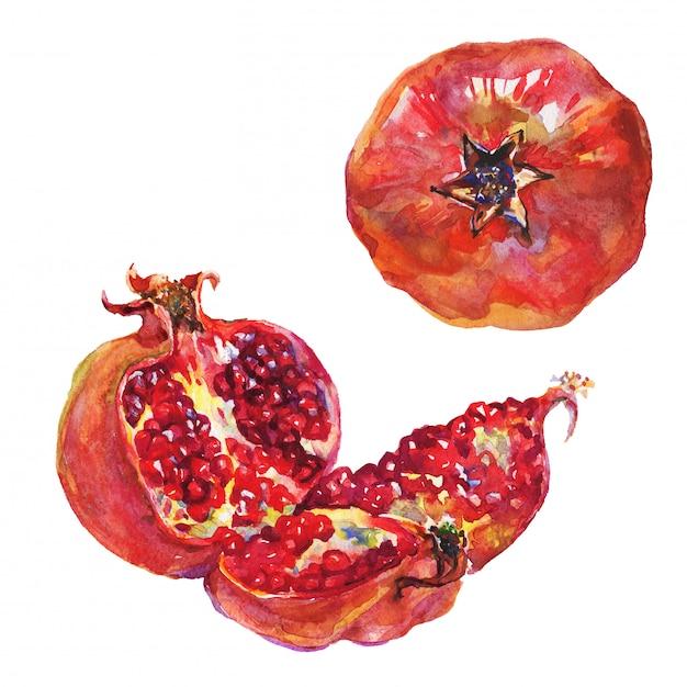 Conjunto dibujado a mano de granada madura y entera. fruta fresca acuarela aislada Foto Premium