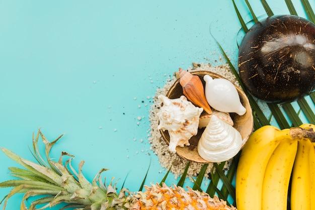 Conjunto de frutas tropicales y conchas marinas. Foto gratis