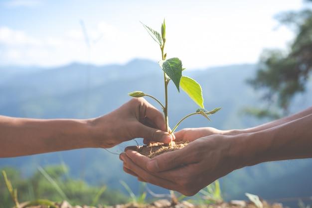 Conservación ambiental en el jardín para niños. Foto gratis