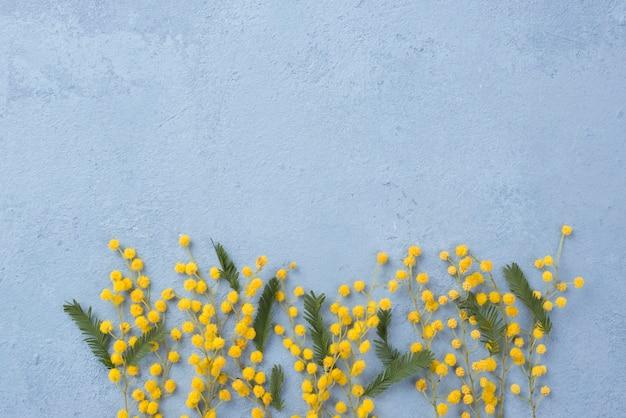 Copiar espacio primavera flores ramas Foto gratis