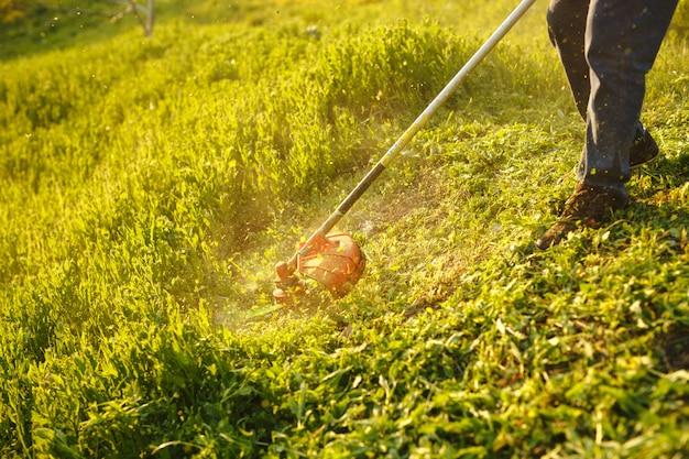Cortadora de césped - trabajador cortando el césped en el patio verde al atardecer. Foto Premium