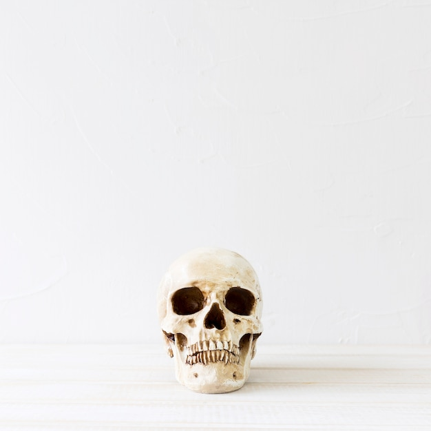 Cráneo espeluznante para la fiesta de halloween Foto gratis