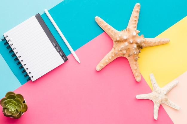 Cuaderno vacío y estrellas de mar en superficie multicolor Foto gratis