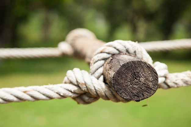 Cuerda sujeta a la madera. Foto Premium