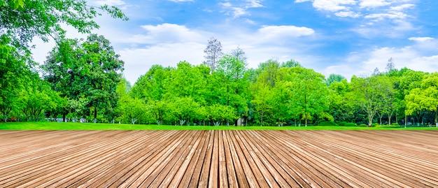 Decoración cielo azul y nubes blancas parques espacio paisaje montañas Foto gratis