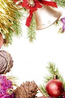 decoración de la Navidad, de coníferas