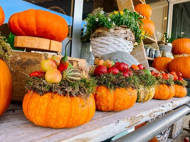 Decoración de otoño para halloween del día de acción de gracias con calabazas naranjas y flores Foto Premium