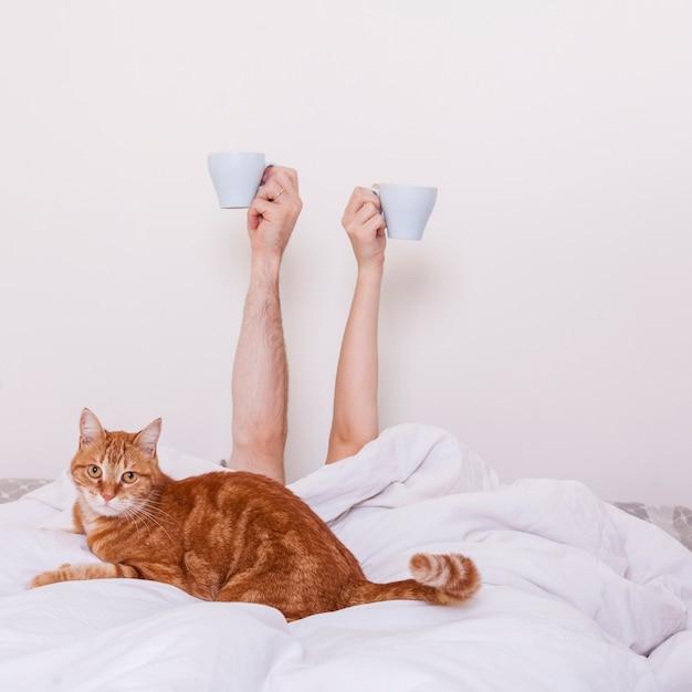 Desayuno en la cama Foto gratis