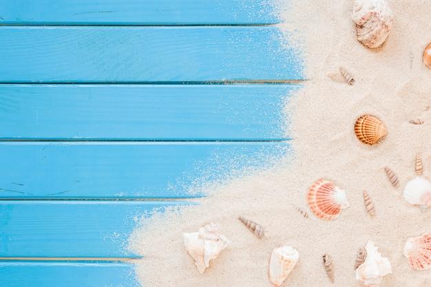 Diferentes conchas de mar con arena en la mesa Foto gratis