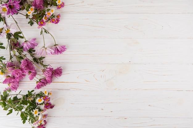Diferentes flores brillantes dispersadas en mesa de luz. Foto gratis