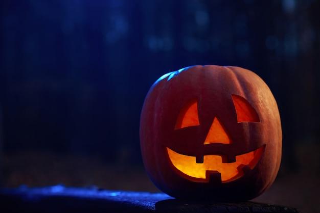 Disparo horizontal de una calabaza de halloween de cabeza de gato en la oscuridad de un misterioso bosque otoñal vela ardiendo dentro de copyspace. Foto gratis