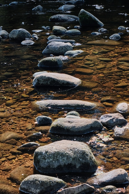 Disparo vertical de la piedra en medio de un chorro de agua Foto gratis