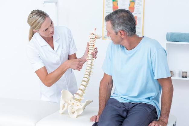 Doctor mostrando a su paciente un modelo de columna vertebral ...
