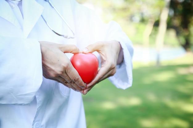 Las doctoras sostienen un corazón rojo y hacen una mano en forma de corazón. el fondo es un árbol verde. Foto Premium