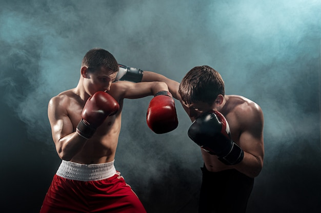 Dos boxeadores profesionales sobre fondo negro ahumado, Foto gratis