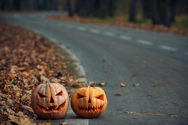 El camino. - Página 5 Dos-calabazas-halloween-al-costado-camino-bosque_213438-2149