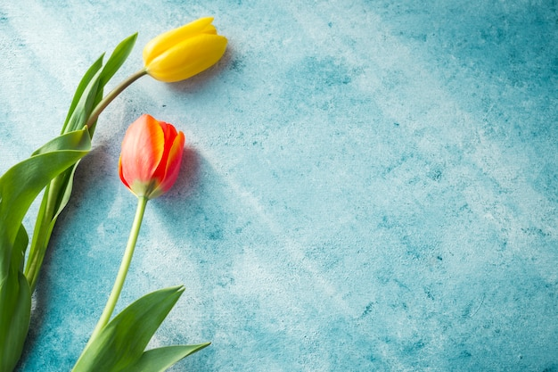 Dos flores de tulipán en la mesa Foto gratis