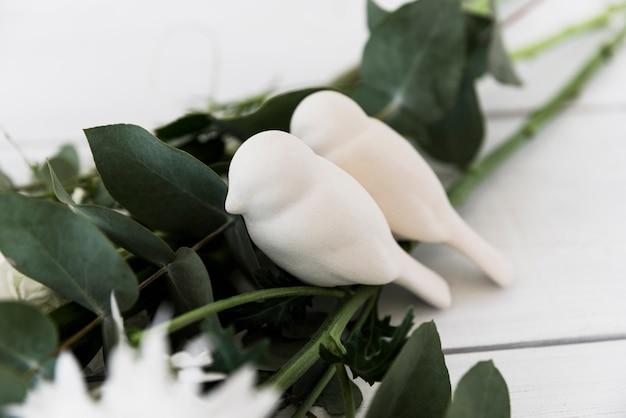 Dos pájaros del amor en las hojas contra el fondo blanco Foto gratis