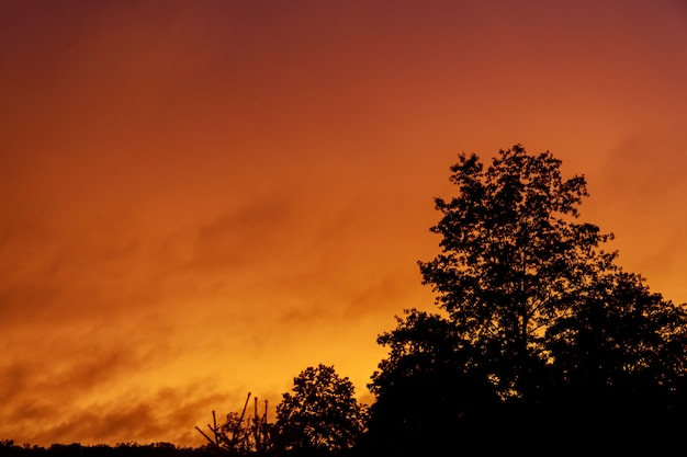 Dramático cielo rosa puesta de sol Foto Premium