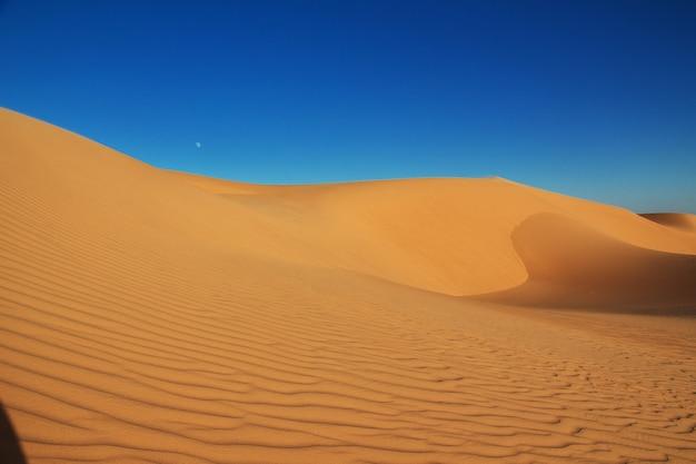 Dunas en el desierto del sahara en el corazón de áfrica Foto Premium