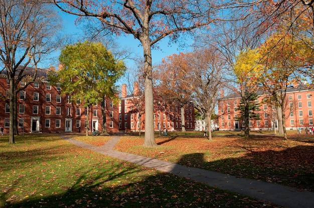 Edificios en el campus de la universidad de harvard en boston, massachusetts, ee. uu. Foto Premium
