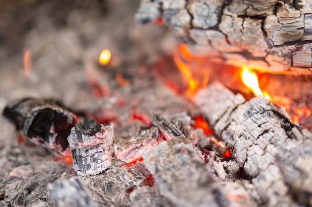 Encendiendo el fuego en el bosque para acampar. Foto gratis