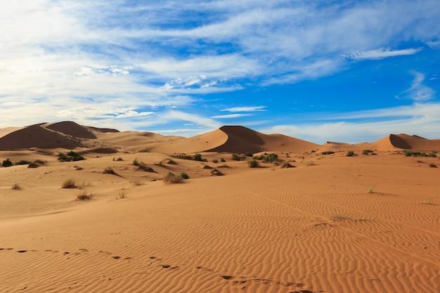 Erg chebbi en marruecos Foto Premium