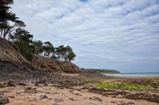 Escabroso paisaje playa hdr marrón Foto gratis