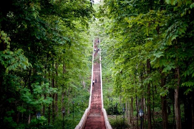 Escaleras y el camino cuesta arriba hasta la cima Foto Premium