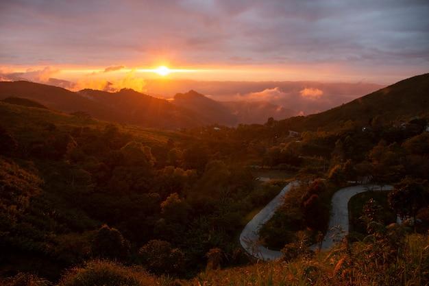 Escena hermosa - punto de visión del tang chiang rai, tailandia del doi pha. Foto Premium