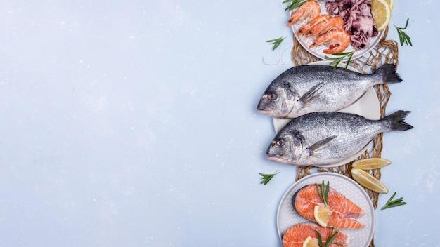 Espacio de copia de surtido de platos de mariscos Foto gratis