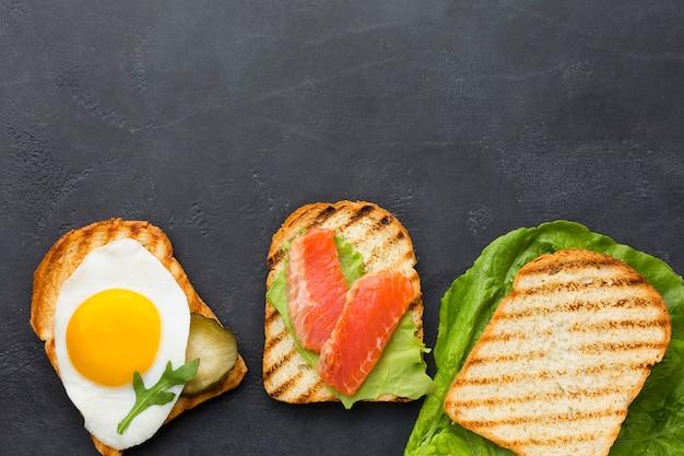 Espacio de copia de surtido de tostadas saludables Foto gratis