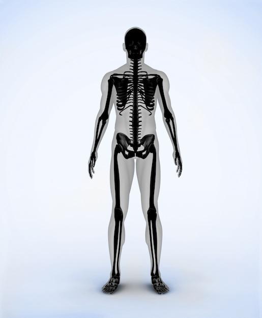 Esqueleto digital negro | Descargar Fotos premium