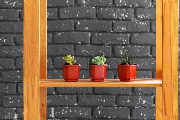 Estante de madera con plantas de decoración del hogar. Foto Premium