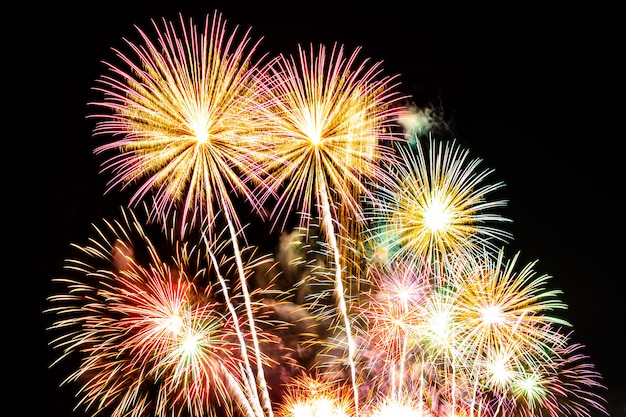 Exhibición hermosa del fuego artificial en el cielo en la noche para la celebración Foto gratis