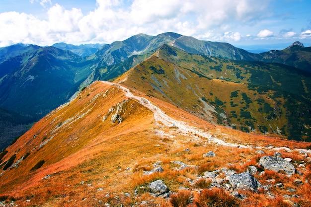 Fantasía y paisaje de la naturaleza colorfull. carpathia. Foto gratis