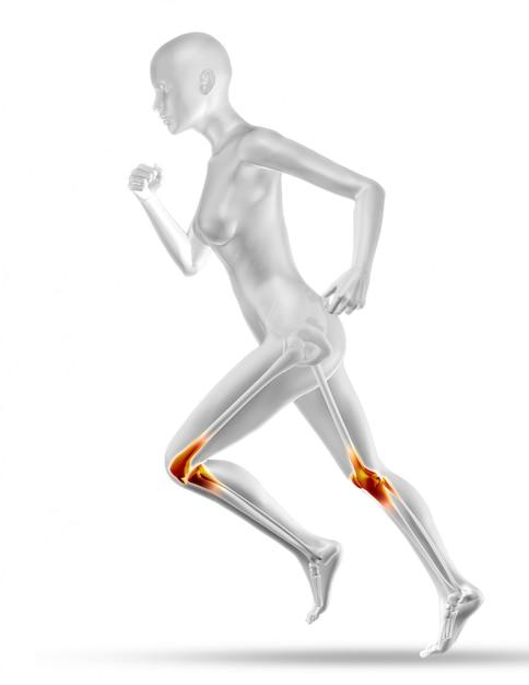 Figura médica femenina 3d con mapa parcial de músculo trotar Foto gratis