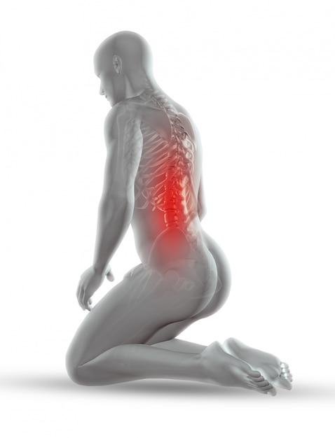 Figura médica masculina 3d con esqueleto en posición de rodillas Foto gratis