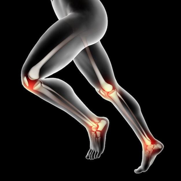 Figura médica masculina en 3d con rodillas y tobillos resaltados. Foto gratis