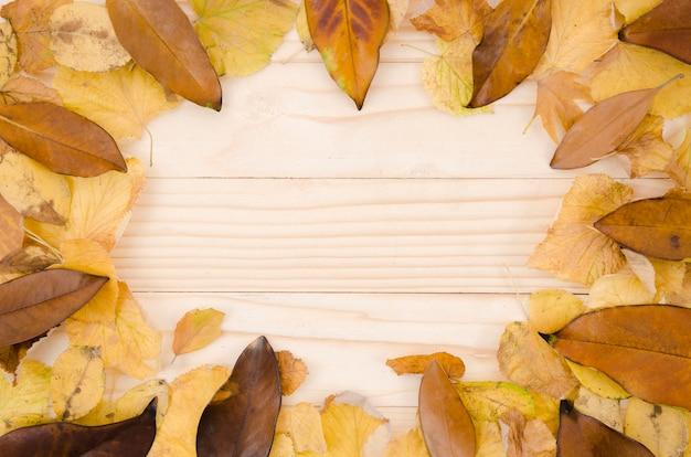 Flat lay hojas de otoño con copy space Foto gratis