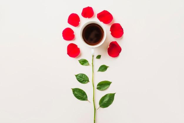 Flor de copa y pétalos con hojas | Descargar Fotos gratis