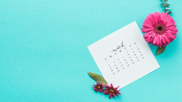 Flor de gerbera con calendario de marzo en mesa. Foto gratis