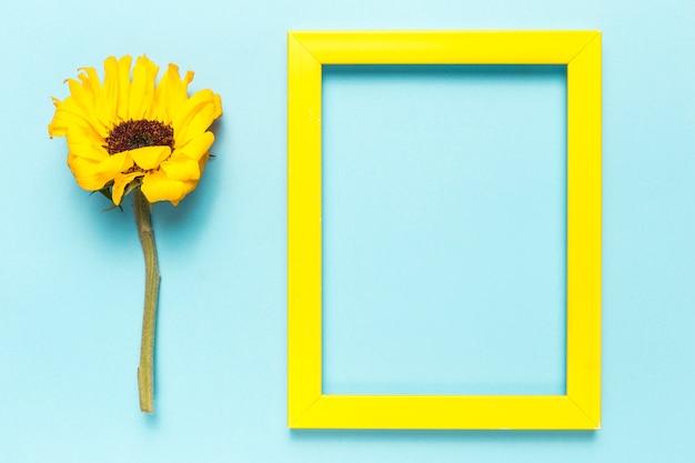 Flor y marco Foto gratis