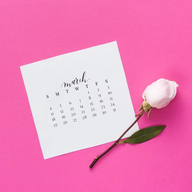 Flor rosa con calendario de marzo en mesa. Foto gratis