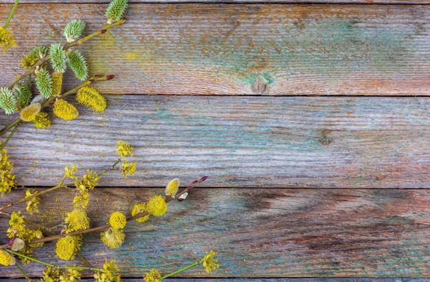 Floración ramitas de sauce y cornejo sobre una superficie de madera vieja Foto Premium