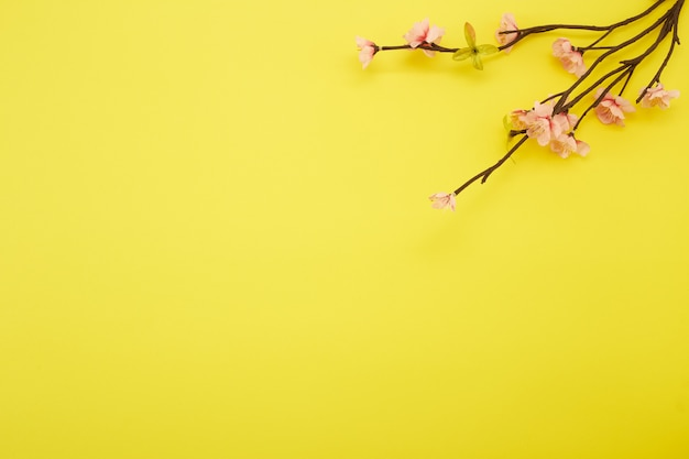 Flores de ciruela sobre fondo amarillo Foto Premium