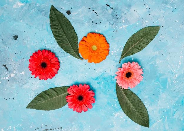 Flores de gerbera con hojas verdes en mesa Foto gratis