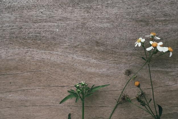 Flores de hierba blanca con madera marrón. Foto gratis