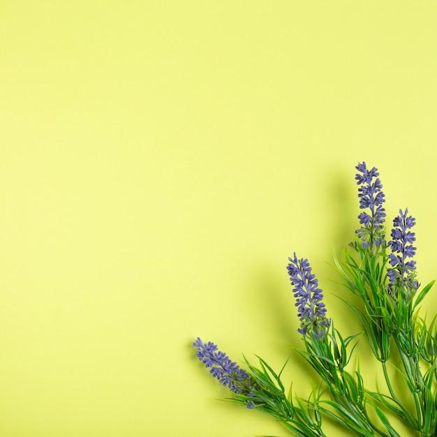 Flores de lavanda sobre fondo verde con espacio de copia Foto gratis