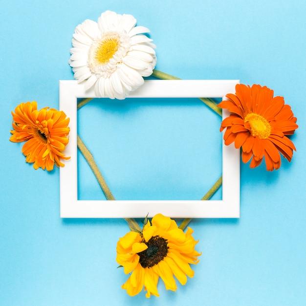 Flores y marco Foto gratis